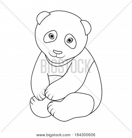 Panda.Animals single icon in outline style vector symbol stock illustration .
