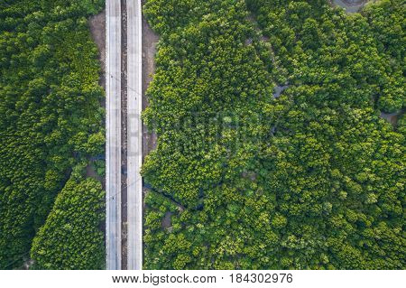Top view road in the green mangrove forest in Phuket Thailand. Aerial view from flying drone