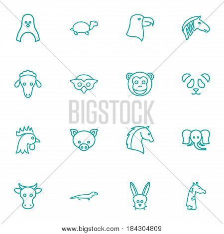 Set Of 16 Brute Outline Icons Set.Collection Of Horse, Monkey, Elephant And Other Elements.