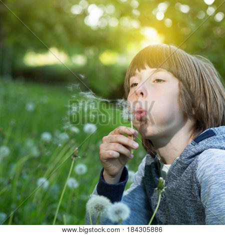 Boy blowing dandelion over blured green grass, summer nature outdoor