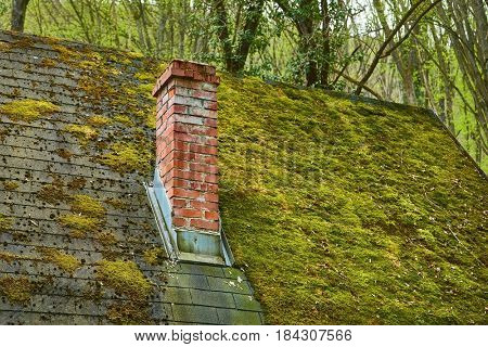 Chimney on a roof of a forest hut