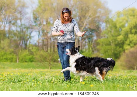 Woman Making Dog Dancing With A Border Collie