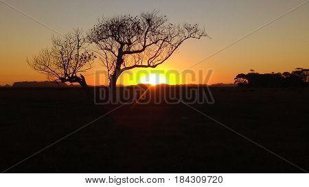 Final de tarde no campo, com pôr do Sol