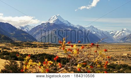 Mount Cook mountain, New Zealand Alps, South Island