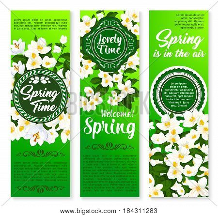 Spring holidays floral banner set. Springtime and hello spring stamp badges, decorated by blooming branches of jasmine with crocus flowers and green leaves for spring season invitation or flyer design