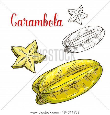 Starfruit isolated sketch. Tropical carambola fruit with star shaped slice. Exotic fruit drink or dessert menu, juice label or vegetarian nutrition nutrition design