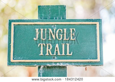 Green and yellow or cream colored sign for Jungle Trail