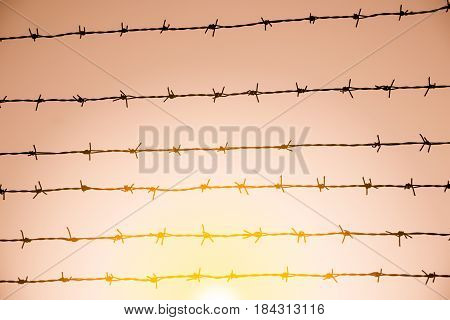 The Barbed Wire On Sky Background With Sunset