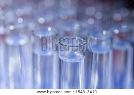 Glass test tubes filled with liquid on rack for an experiment in science research lab