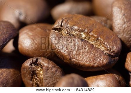 Roasted brown coffee beans close-up macro photo natural food background selective focue shallow depth of field.