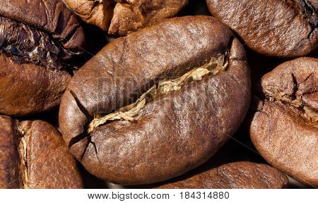 Brown roasted coffee beans close-up macro photo natural food background selective focue shallow depth of field.