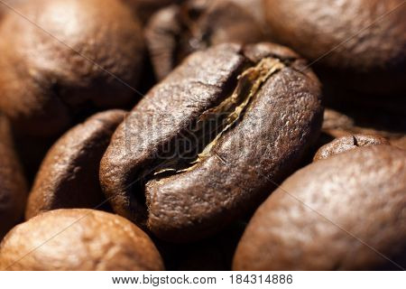 Brown roasted coffee bean in heap of coffee beans close-up macro photo natural food background selective focue shallow depth of field.