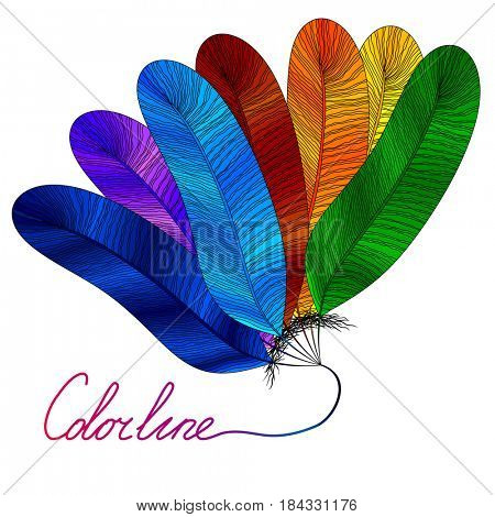 Colorful bird feather isolated on a white background, design illustration.