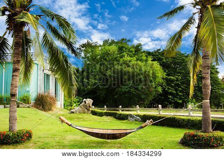 Cradle made from bamboo hang on coconut locate at garden