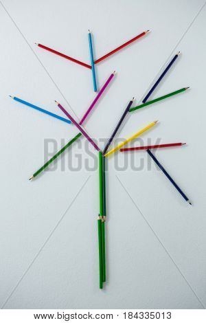 Colored pencil forming a tree on white background