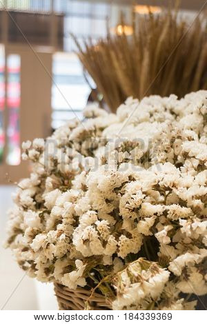 Beautiful White Dried Flower Pot stock photo
