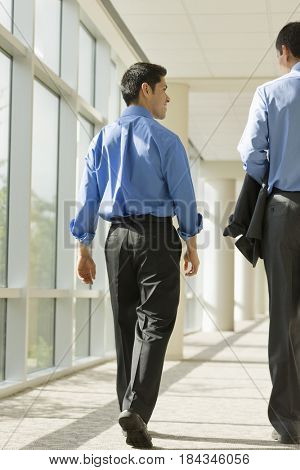 Hispanic businessmen walking in office corridor