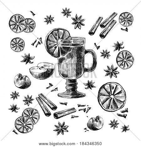 Mulled Wine and spices, orange, apple, cinnamon, carnation, anisetree. Hand drawn vector Illustration.