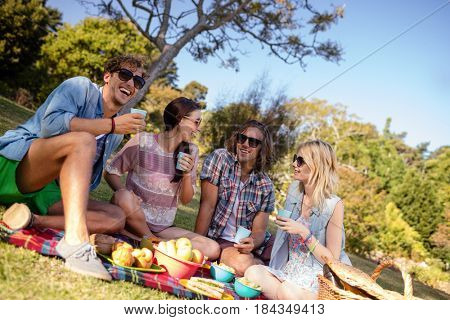 Friends interacting while having picnic in park on a sunny day