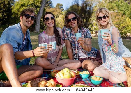 Portrait of friends having picnic in park on a sunny day