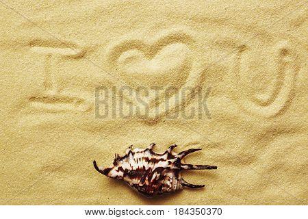 Inscription on sand I love you. A sea cockleshell on a sandy background.