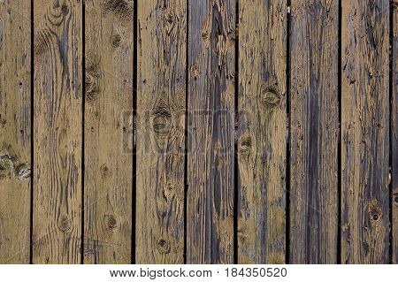 Wooden fence, old peeled-off paint. Vintage wooden grunge texture, photo wallpaper. background.