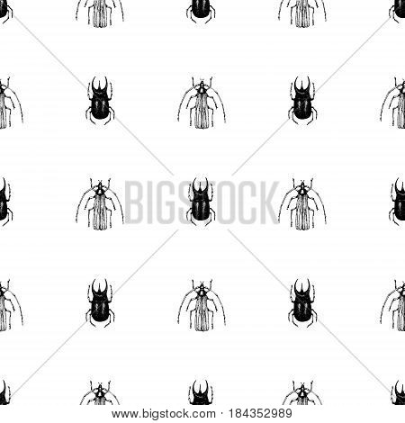 Vector vintage hand drawn seamless vector pattern with beetle, bug, dor, dorr, insect on a white background. Retro illustration