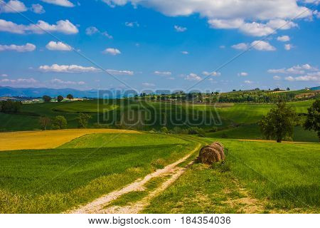 Road to the paradise. Typical umbria rural landscape in Italy