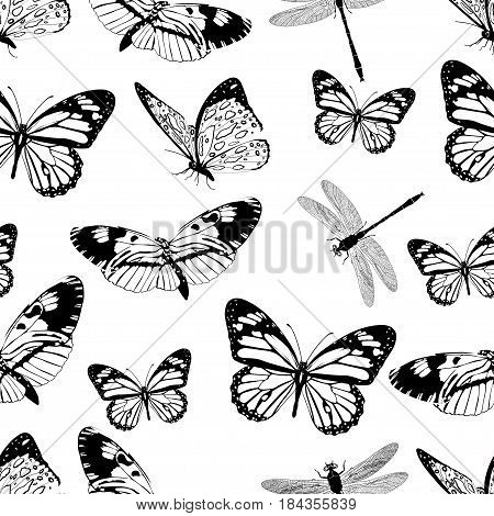 Butterflies And Dragonflies Seamless Pattern, Monochrome Vector Background, Coloring Book. Black And