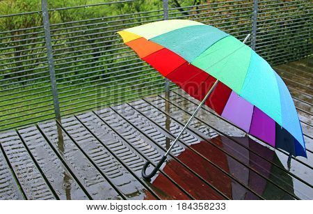 rain: multi colored umbrella on wet wood planks, green garden in the background