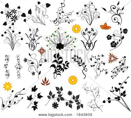 Design-Elemente, Blumen, Vektor-Illustration