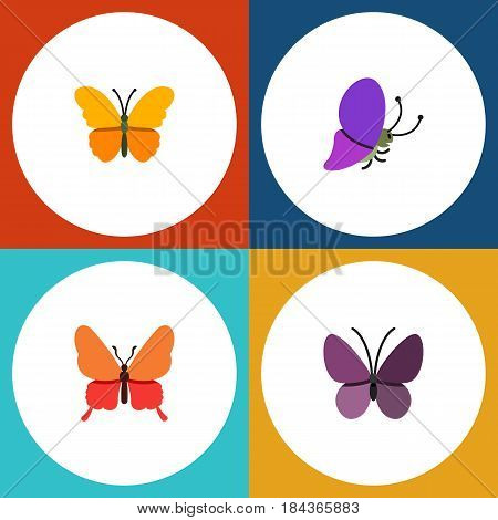 Flat Moth Set Of Danaus Plexippus, Butterfly, Summer Insect And Other Vector Objects. Also Includes Butterfly, Insect, Summer Elements.