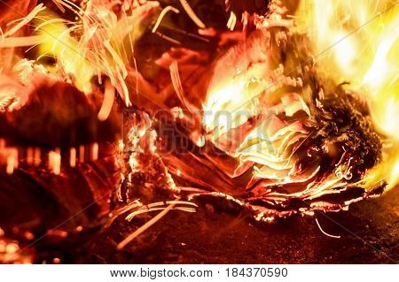 Closeup image of fire and burning newspapers