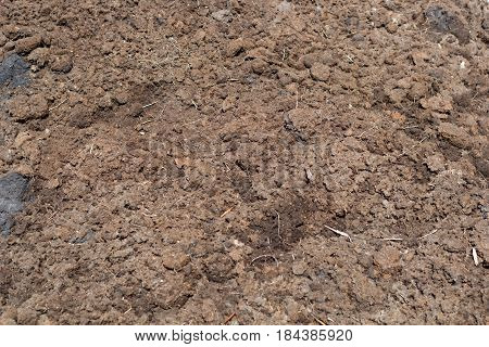 soil texture top view for a background