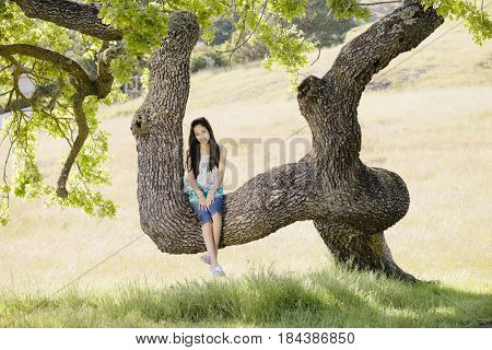 Hispanic girl sitting in tree