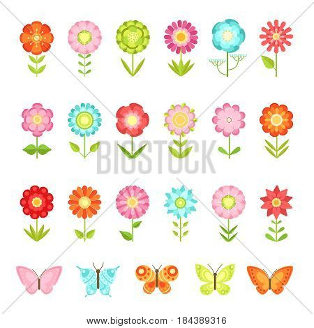 Funny butterfly on flowers in garden. Illustrations of natural flower in flat style isolate on white background. Collection of flower and butterfly, summer green flowers