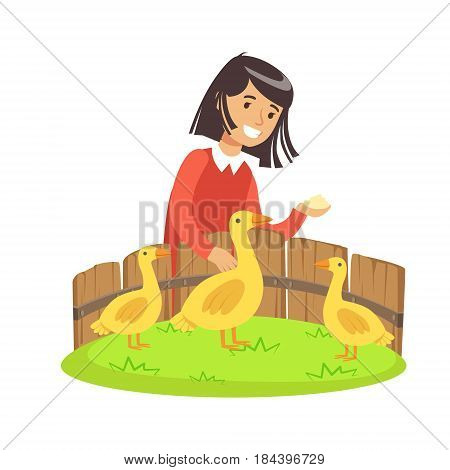 Cute little girl feeding ducks with grain in a mini zoo. Colorful cartoon character vector Illustration isolated on a white background