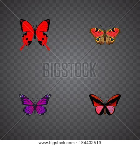 Realistic Purple Monarch, Sangaris, American Painted Lady And Other Vector Elements. Set Of Beauty Realistic Symbols Also Includes Butterfly, Julia, Brown Objects.