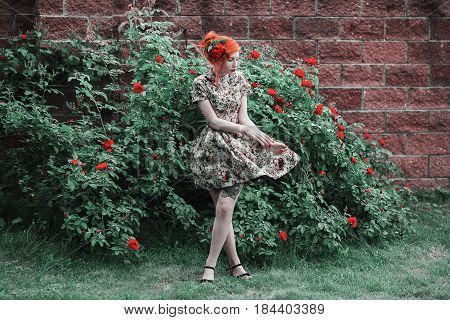 A woman with red curly hair in a floral dress on a background of a bush with red roses in garden. Red-haired girl with pale skin blue eyes bright unusual appearance and red lips and thin waist in the garden. Roses garden. Flower garden