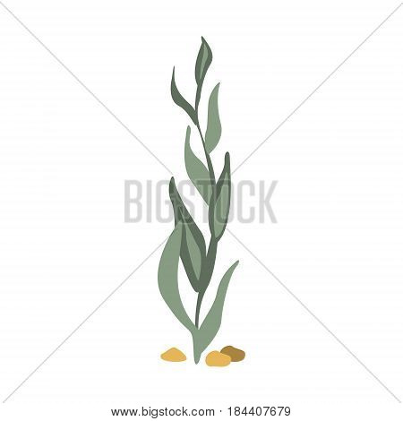 Sea Floor Seagrass, Part Of Mediterranean Sea Marine Animals And Reef Life Illustrations Series. Aquarium Element Isolated Stylized Icon, Underwater Inhabitant Artistic Sticker.