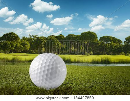 Golf ball and the golf course extreme close up