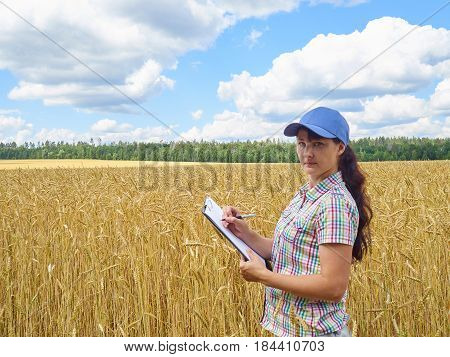 Farmer girl in a plaid shirt controlled his field wheat and writing notes