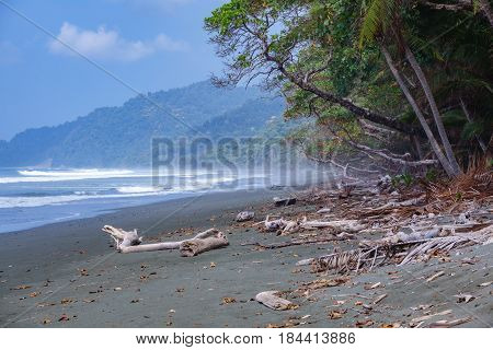 Mist in Corcovado National Park beach and forest, Osa Peninsula, Costa Rica