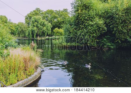 Beautiful Scenery In London St James Park