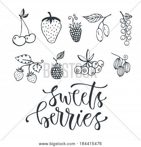 Sweet berries hand drawn illustration. Vector isolated berry set on white background.