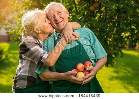 Elderly couple with apples. Woman kissing man outdoors. Love is care.