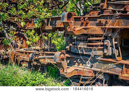 Train bogies forgotten into nature, closeup view