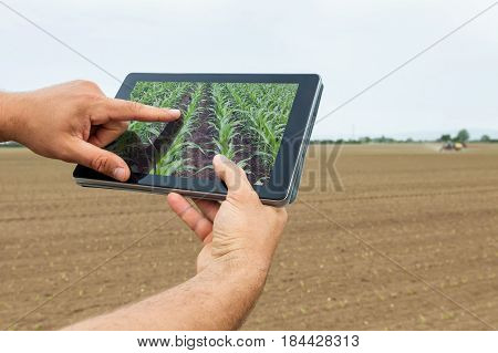 Smart Agriculture. Farmer Using Tablet Corn Planting. Modern Agriculture Concept.