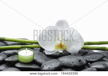 White orchid blossom with wet black stones ,grove,candle on wet background