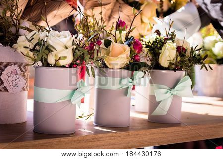 Scenery with roses. Interior colors. Flowers for the interior. Roses in pots.
